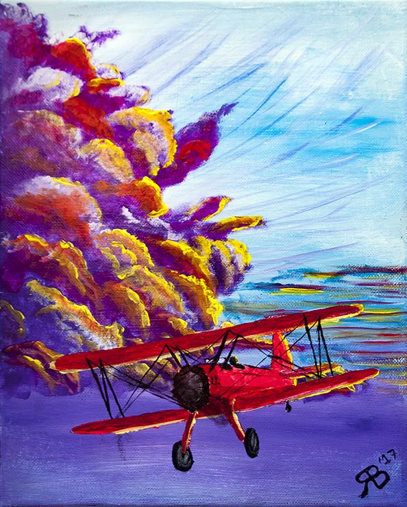 schilderij - Rood Vliegtuig